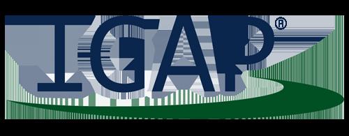 IGAP Personalvermittlung